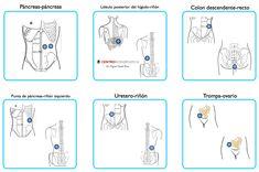 Paresespeciales - Par Biomagnético - centrobioenergetica
