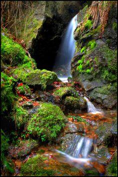 The Caves, Kunkeld, Scotland