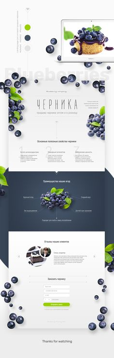 Ознакомьтесь с моим проектом @Behance: «Landing page Blueberries» https://www.behance.net/gallery/52352009/Landing-page-Blueberries