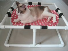 Hey, I found this really awesome Etsy listing at https://www.etsy.com/listing/216740619/cat-bed-cat-cot-cat-hammock-small-pets