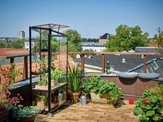 Balkongväxthus Juliana - Willab Garden