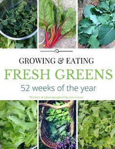 Growing & Eating Fresh Greens Year-Round Seasonal eating at its finest! Grow outside the normal growing season with season extenders, overwintering, indoor sprouts and micro greens, or even in a greenhouse or cold frames. Learn how to grow greens during the summer heat and how to succession s