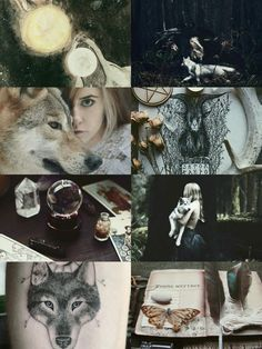 "demoniclour: ""Wolf Witch Aesthetic """