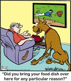 Today on Marmaduke - Comics by Brad Anderson Dog Comics, Read Comics, Dog Cartoons, Cartoon Dog, Funny Animal Pictures, Funny Animals, Dog Jokes, Calvin And Hobbes, Poodles