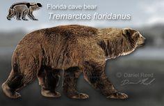 Tremarctos floridanus by Dantheman9758.deviantart.com on @deviantART