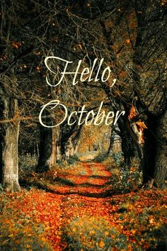 happy first day of october everyone :)