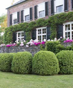 Gardens at First Light vis Quintessence Blog