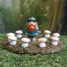 Happy St. Patrick's day in the fairy garden!