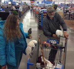 People of Walmart Part 2 - Pics 1