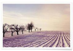 Winter Field - Mareike Böhmer - Premium Poster