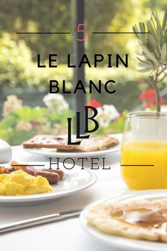 Welcome on the official site of Hotel Le Lapin Blanc, an elegant boutique hotel in the Latin Qaurter (Paris near the Sorbonne, Luxembourg Gardens and Notre Dame Cathedral. Luxembourg Gardens, France, Cheap Hotels, Travel, Latin Dance, Rabbits, Viajes, Trips, Traveling