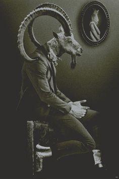 "Animal heads, taxidermy, photo shoot with ""animal head"" models."
