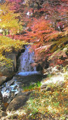 Tokugawa Garden, Nagoya, Japan Japanese History, Nagoya, River, Spaces, Garden, Nature, Outdoor, Inspiration, Outdoors