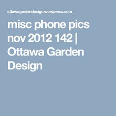 misc phone pics nov 2012 142   Ottawa Garden Design