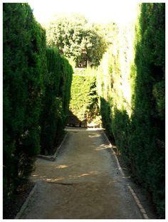 Labyrinth Park Barcelona, Sidewalk, Country Roads, Park, Side Walkway, Barcelona Spain, Walkway, Parks, Walkways