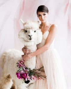 Llama Drama. . . . (Actually Napoleon's an Alpaca but working with @rojothellama's team was totally unreal!!) Styled shoot for @dropitmod Studio  Home // Photography by @spostophoto // Talent by @natasarafinchan @kennedymickaela // Beauty by @erinskipley // Florist by @selvafloral // ribbon by @tonoandco // Gowns & Headpieces by @twigsandhoneyofficial // Rentals by @something_borrowed_pdx // Venue @acehotelportland #makeportraits #llama #llamas #thatsdarling #darlingweekend #heyheyhellomay…