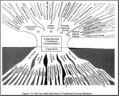 Roots and Branches of the Traditional Chinese Medicine Healing Herbs, Natural Healing, Herbal Medicine, Natural Medicine, Chakras, Medicine Quotes, Eastern Medicine, Chinese Herbs, Health Heal