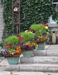 Colorful Containers !