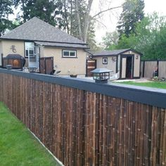 Chain Link Fence Privacy Ideas got ugly chainlink fence? here are ways to cover it up! | bamboo