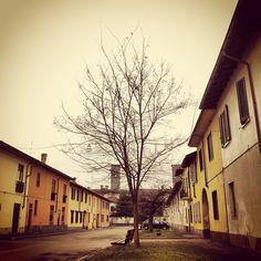 Just another #grey day. #winter #baretree (presso Castelletto Di Cuggiono)