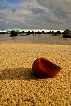 #Mauritius hidden beach
