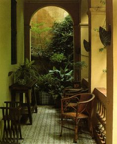 All Images from Terence Conran's Decorating with Plants Susan Conder © 1986 All images are from the 1986 edition of . Hanging Plants, Indoor Plants, Terence Conran, Outdoor Seating, Outdoor Decor, Face Planters, Summer Plants, Festivals Around The World, Gardens