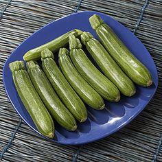 Vegan stuffed zucchini - http://www.tofutti.com/vegan-stuffed-zucchini/