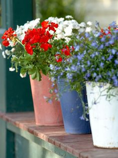 Add patriotic pops of color to your 4th of July bash. Fill painted pots with red, white, and blue summer flowers, and line them up on your front stoop or deck. #redwhiteandblue #4thofjuly #4thofjulyparty #partyideas #4thofjulydecorations #bhg White And Blue Flowers, Red And White, Fresh Flowers, July Flowers, Potted Flowers, Flowers Garden, Summer Flowers, Yellow Roses, Potted Plants