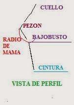 El rincón de Zonia: PATRON DEL  SUJETADOR BASICO CON CINTURILLA-inclus...
