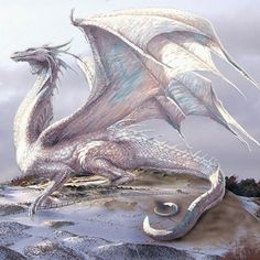 - You are in the right place about Tattoo Design And Style Galleries On The Net – Are They - Dnd Dragons, Dungeons And Dragons, Fantasy Dragon, Fantasy Art, Fantasy Creatures, Mythical Creatures, Snow Dragon, Dragon Rise, Dragon Tales