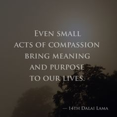 Even small acts of compassion bring meaning and purpose to our lives. — 14th Dalai Lama