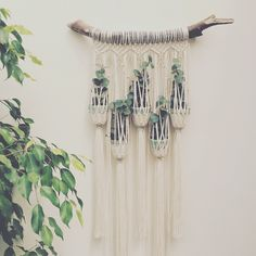 New macrame plant hanger! Available in my Etsy shop Macrame Adventure More