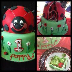 Coxie's Cakes Ladybug Cake http://www.coxiescakes.com.au/