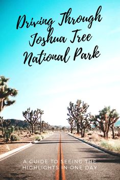 This one-day highlights tour through Joshua Tree National Park is great for those who are limited with time. If you are looking for a short day trip idea from Los Angeles or San Diego, or just want a quick detour on your road trip from or to Las Vegas and the Grand Canyon than keep reading!   National Park USA   National Park   National Park Road Trip   Joshua Tree National Park   Joshua Tree Photoshoot   Travel Tips   USA Travel   Where to Go   Travel Destinations   ROAD TRIP USA Usa Roadtrip, Road Trip Usa, Travel Usa, Travel Tips, Travel Info, Travel Ideas, California National Parks, National Parks Usa, Joshua Tree National Park