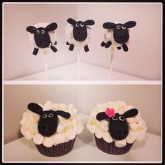 Shauna the sheep cakepops