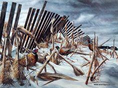 Kevin Daniel A Break in the Storm