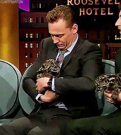 Tom and the Baby-Leopard. Gif-set (by clintfbarton): http://maryxglz.tumblr.com/post/160043836097/clintfbarton-tom-and-the-baby-leopard