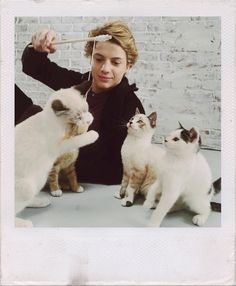 Jace and cats 😻 Jason Norman, Henry Danger Jace Norman, Cute Celebrities, Celebs, Henry Danger Nickelodeon, Kitten Drawing, Private Eye, My Superhero, Famous Movies