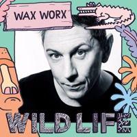 #WILDLIFE16 MIX 2.0 // WAX WORX by WILD LIFE FESTIVAL on SoundCloud