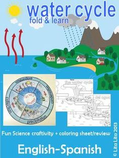 This is a science fold and learn activity that can be used in different grades. Your students will be able to complete this watercycle wheel: precipitation, collection, evaporation and condensation. This craft has been adapted for two levels (one with some writing).