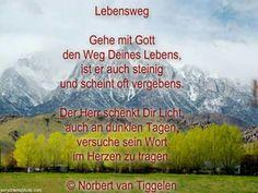 Norbert van Tiggelen