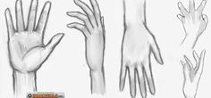 Hand drawing references