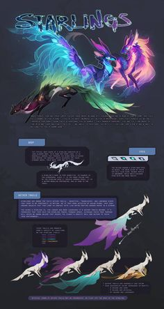 Anime Drawings Starling Species Sheet by sordid-dessert - Mystical Animals, Mythical Creatures Art, Mythological Creatures, Magical Creatures, Fantasy Creatures, Creature Concept Art, Creature Design, Cute Animal Drawings, Cute Drawings