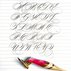 Meet Calligrapher Suzanne Cunningham – Surely Simple