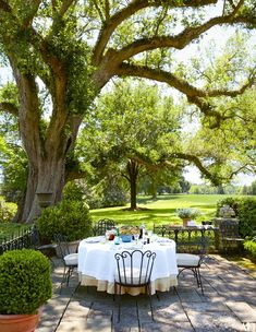 Inside a Historic South Carolina Plantation House Turned Family Hom An outdoor dining space where a live oak shelters vintage wrought-iron chairs and a table Outdoor Rooms, Outdoor Dining, Outdoor Gardens, Indoor Outdoor, Outdoor Decor, Outdoor Patios, Outdoor Kitchens, Plantation Homes, Al Fresco Dining
