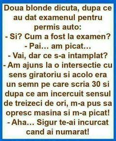 Sigur Sarcastic Humor, Sarcasm, Funny Times, Life Humor, Grumpy Cat, Super Funny, Texts, Funny Quotes, Jokes