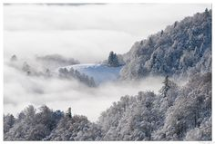 Promised Land   |   La terre promise - Unlike the Alps and the Pyrenees, the Vosges Mountains are synonymous with softness thanks to the rounded shape of their peaks     |    Magnifique paysages Vosgiens synonymes de douceur grâce à la forme arrondie de leurs sommets
