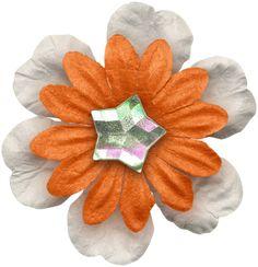 KAagard_Flower3.png