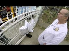 Stray Cat With Head Stuck in Fence Gets Rescued and Finds a Forever Home! (VIDEO) | One Green Planet