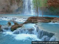 Image result for animated pictures of nature gif